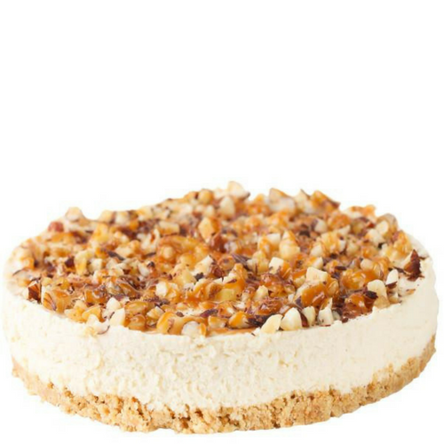 toasted coconut cheesecake purilum